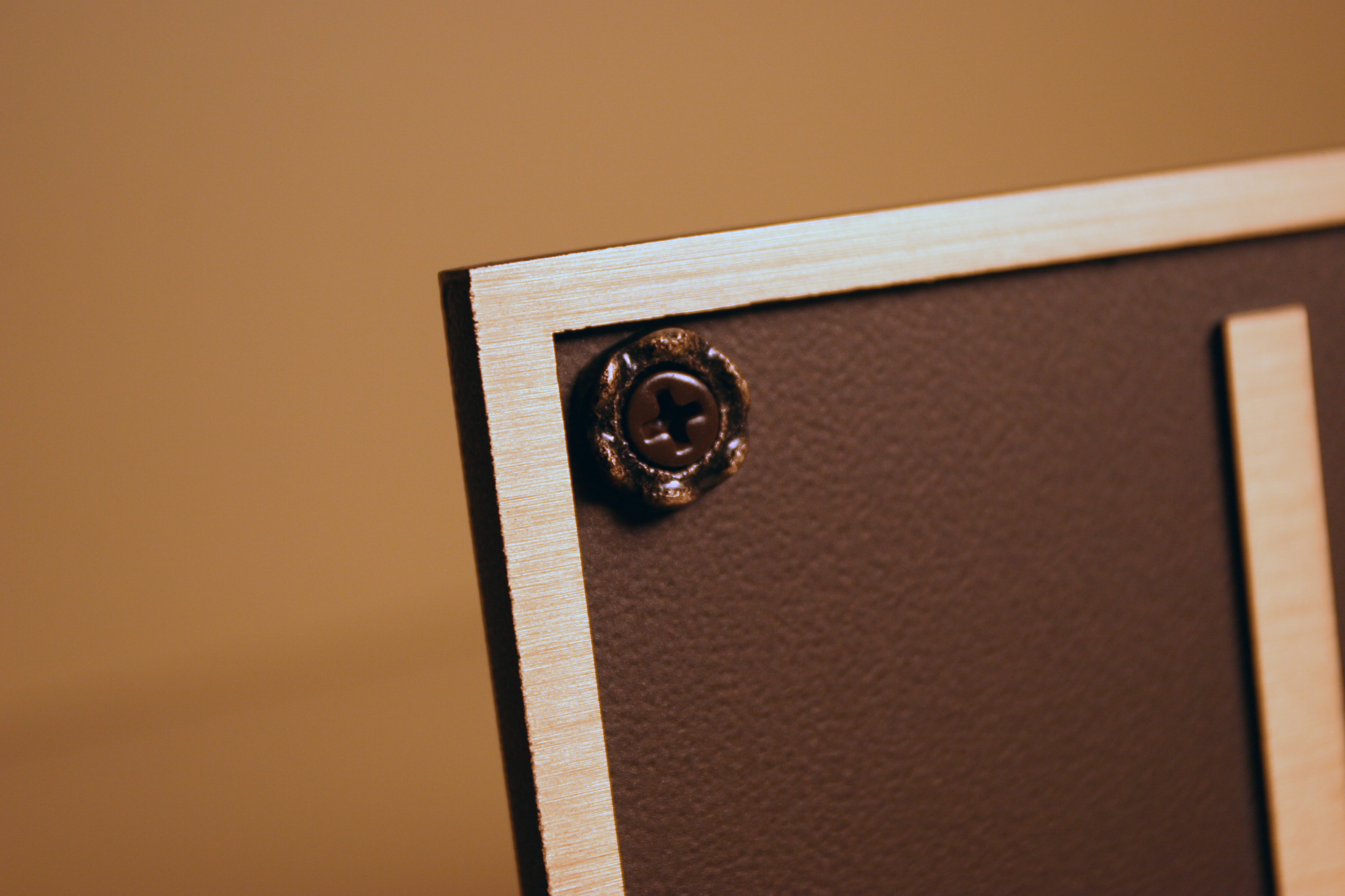 Rosette Screw Detail for Solid Wall Mount
